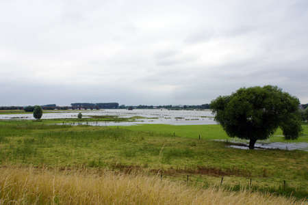 flooded: Flooded meadows and pastures, Wesel, Nordrhein-Westfalen, Germany