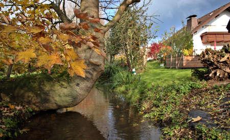 Garden Idyll in autumn, Weilerswist, North Rhine-Westphalia, Germany