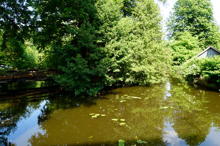 Nature idyll at the Aller in Wienhausen, Lower Saxony, Germany Stock Photo