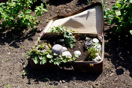 funny decoration in the garden - mini garden in a travel suitcase