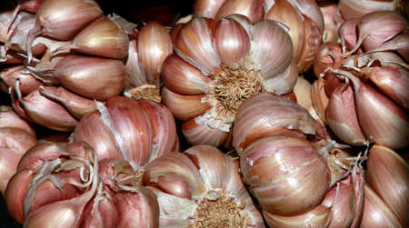 Garlic bulbs on the market, Santa Cruz de La Palma, La Palma, Canary Islands, Spain Stock Photo