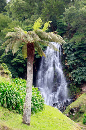 Waterfall in the park Ribeira dos Caldeiroes, Achada, Nordeste, Sao Miguel, Azores, Portugal