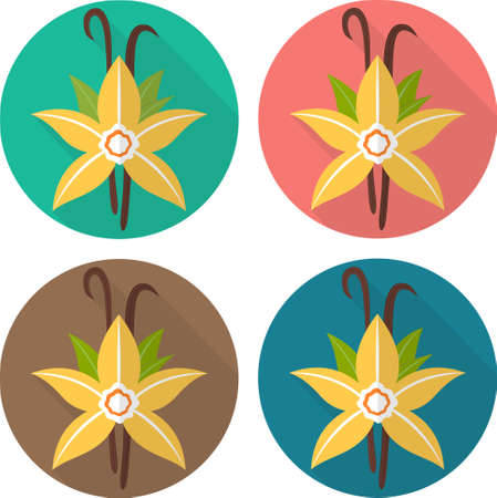 flavoring: Colorful flat icons: vanilla flower. Spices