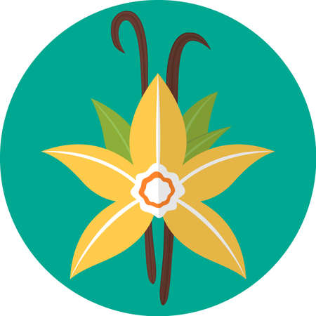 flavorings: Colorful flat icon: vanilla flower. Spices Illustration