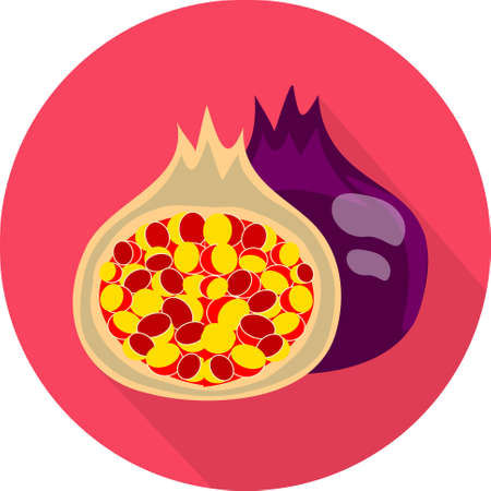 fig: Juicy fig. Colorful flat icon