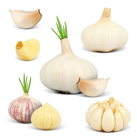 fresh garlic: Collection of garlic isolated on white