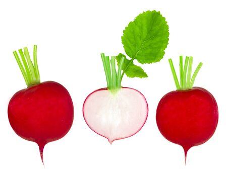 Collection of radish isolated on white photo