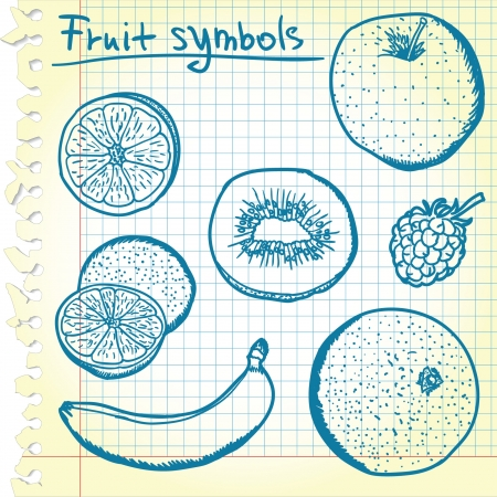 apple slice: Fruit sketches