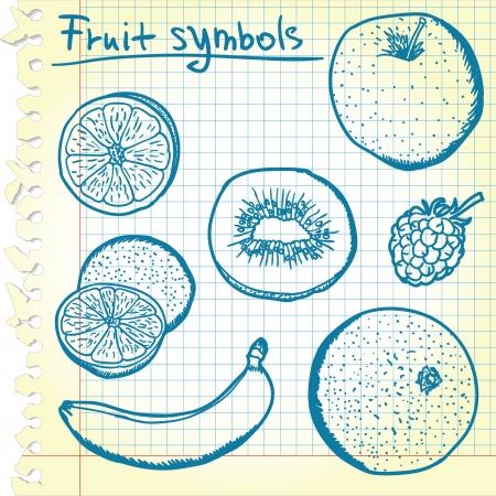 grapefruits: Fruit sketches