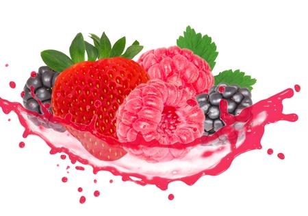 Forest fruit with splash isolated on white photo