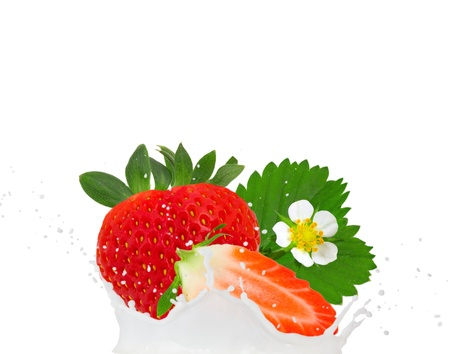 Milk splash with strawberries isolated on white photo