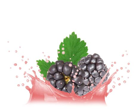 Splash with blackberries isolated on white photo