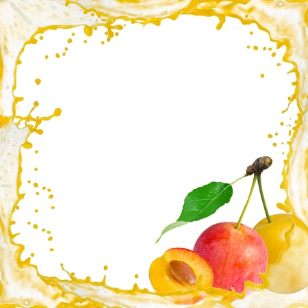 Splash frame with mirabelle plums isolated on white Stock Photo - 15365671