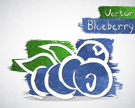healthful: Vector illustration of blueberry Illustration