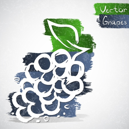 healthful: Vector illustration of grapes