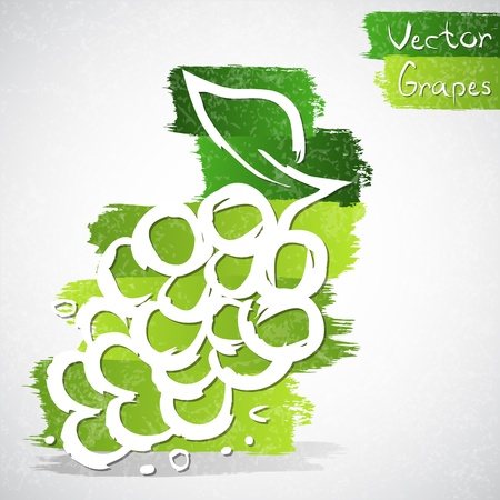Vector illustration of grapes Vector