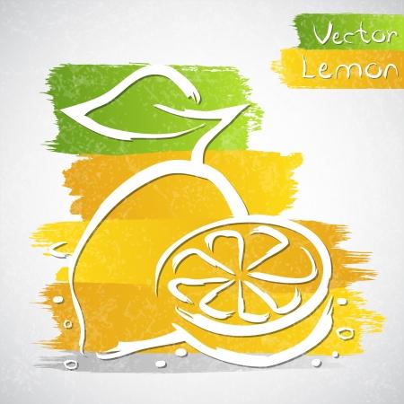 bitter: Vector illustration of lemon