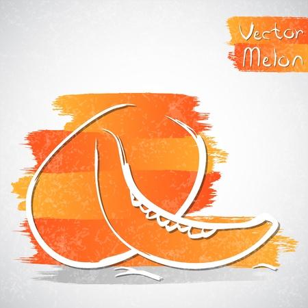 healthful: Vector illustration of melon