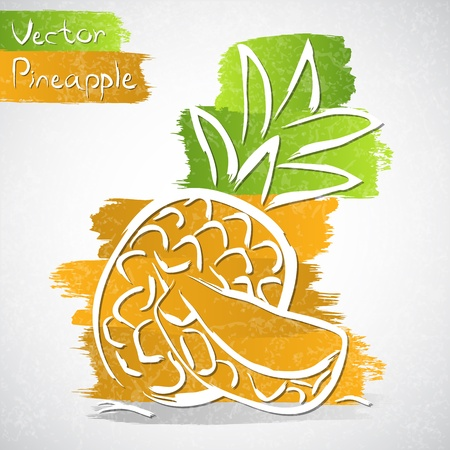 grocery: Vector illustration of pineapple with slice