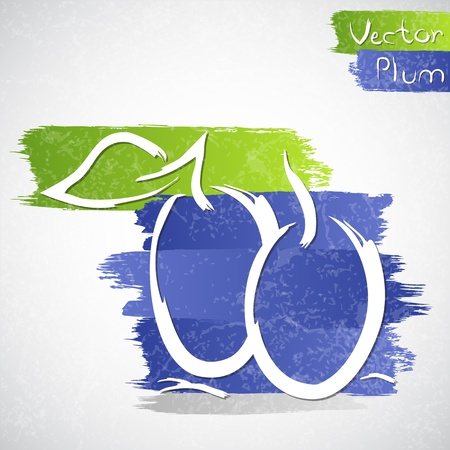 healthful: Vector illustration of plum with leaves