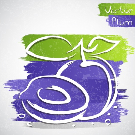 Vector illustration of plum with slice Vector
