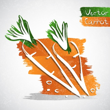 healthful: Vector illustration of two carrots