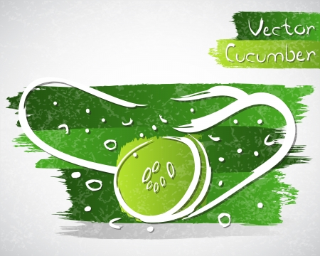 cucumber slice: Vector illustration of cucumber with slice Illustration