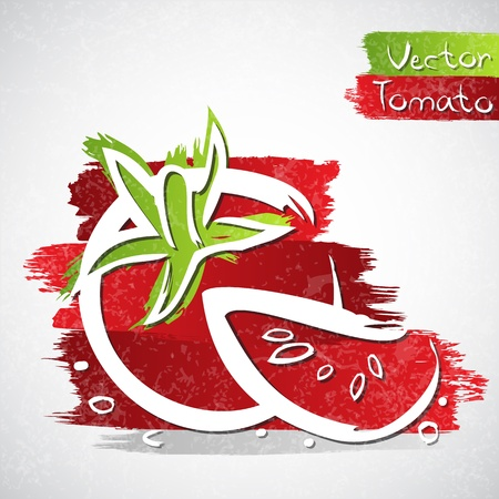 cherry tomato: Vector illustration of tomato with slice