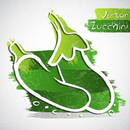 Vector illustration of green zucchini