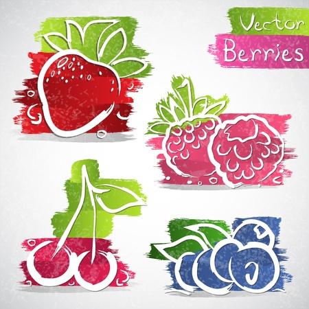 Vector illustratie van kleurrijke vruchten icoon collectie