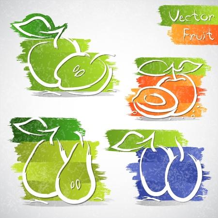 ciruela: Ilustraci�n vectorial de colores de la colecci�n icono de frutas