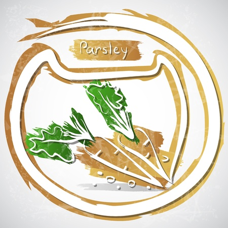 healthful: Illustration of parsley with leaves