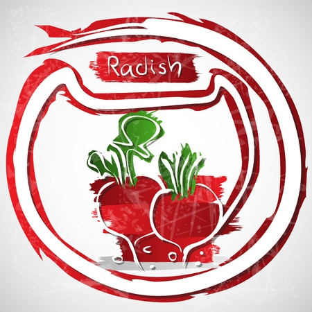 healthful: Illustration of raddish with leaves Illustration