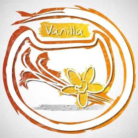 indian bean: illustration of cup of vanilla