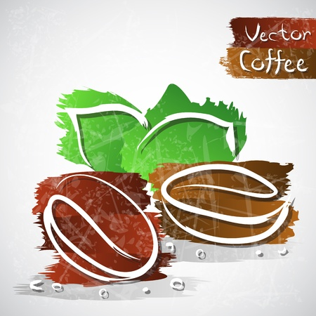 Vector illustration of coffee beans