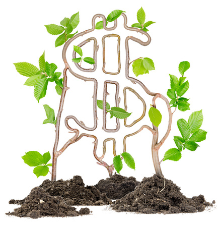 Plants growing from soil heaps forming Dollar sign photo