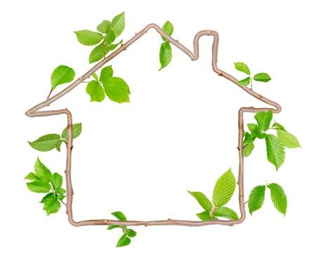 raum weiss: Pflanzen mit Bl�ttern bilden Haus mit Leerraum