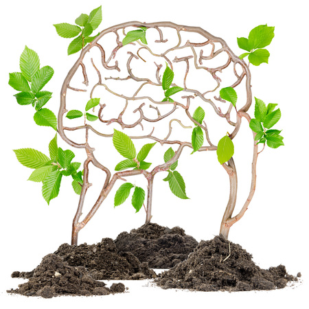 mental: Plants growing from soil heaps forming brain