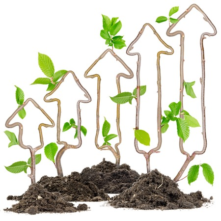 business trends: Plants growing from soil heaps forming arrows pointing upwards Stock Photo