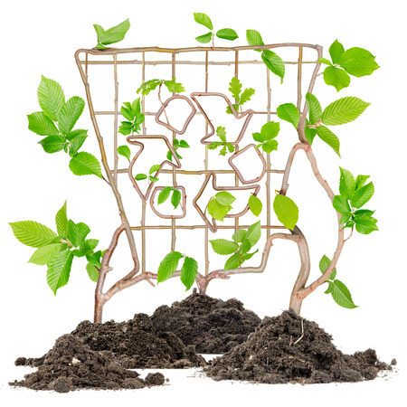 recycling plant: Plants growing from soil heaps forming bin with recycle symbol
