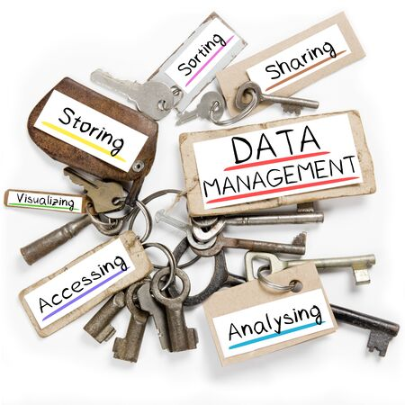 data management: Photo of key bunch and paper tags with DATA MANAGEMENT conceptual words Stock Photo
