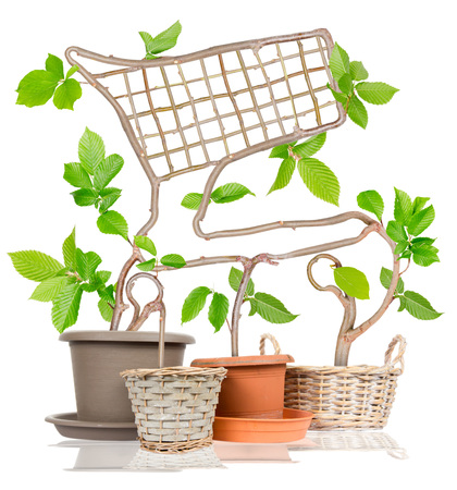 shopping cart isolated: Photo of plants growing from pots forming shopping cart isolated on white