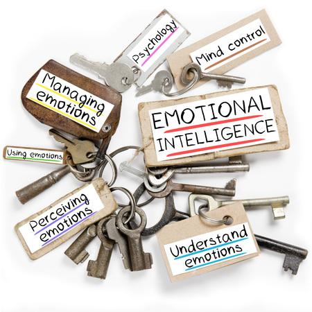 Foto van de belangrijkste bos en papier tags met emotionele intelligentie conceptuele woorden Stockfoto
