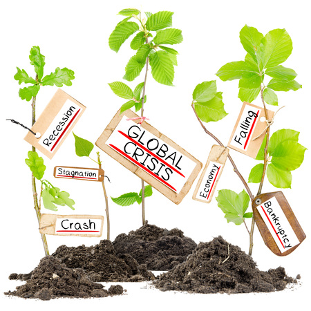 global crisis: Photo of plants growing from soil heaps with GLOBAL CRISIS conceptual words written on paper cards