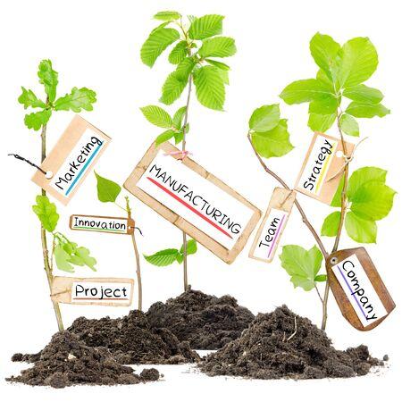 Foto van planten groeien van grond hopen met productiefaciliteiten conceptuele woorden op papier, kaarten Stockfoto