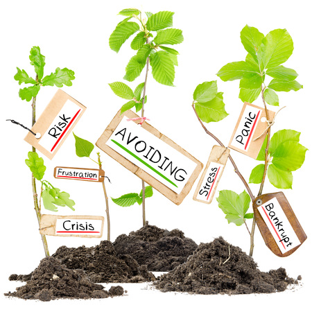 growing: Photo of plants growing from soil heaps with AVOIDING conceptual words written on paper cards Stock Photo