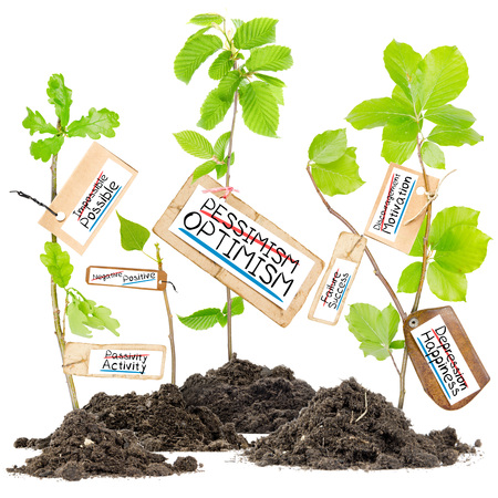 pessimism: Photo of plants growing from soil heaps with PESSIMISM OPTIMISM conceptual words written on paper cards Stock Photo