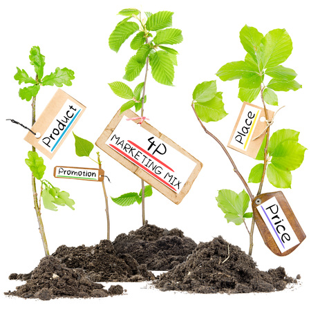 4p: Photo of plants growing from soil heaps with 4P MARKETING MIX conceptual words written on paper cards