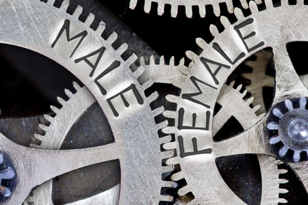 challenging sex: Macro photo of tooth wheel mechanism with imprinted arrows and MALE, FEMALE concept words Stock Photo