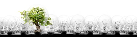 Photo of light bulbs in rows with tree on white background; concept of ecology, power saving, standing out, uniqueness and innovation 스톡 콘텐츠